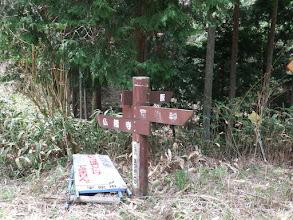 林道カトラ線に出る