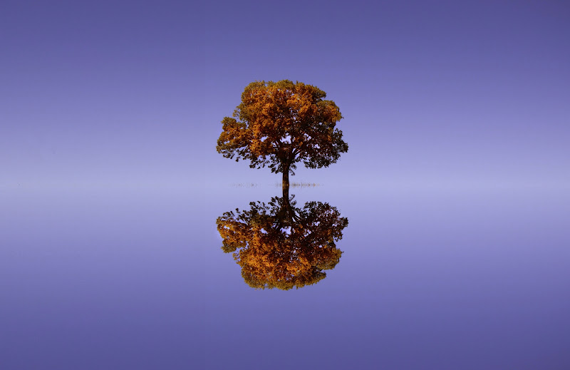 La fantasia dell'autunno di natalia_bondarenko