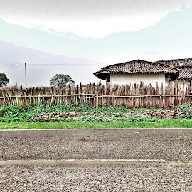 Woody house by Harshal Hardeniya - Landscapes Travel ( greenery, nature, road, wood, village )