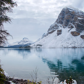 Bow Lake I by Glen Fortner - Landscapes Waterscapes ( simpsons, canada, rockies, bow, banff )