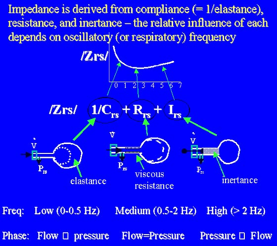 The frequency of input (e.g., flow signals) determines the relative contribution of physical factors, compliance (= 1/elastance), resistance, or inertance, to the net pressure-flow relationship (impedance).