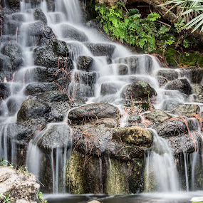 Waterfall by Rob Frederick - Landscapes Waterscapes ( water, stream, park, pool, rocks, pond )