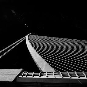 Bridge by Karin Wollina - Black & White Buildings & Architecture ( minimal, valencia, bridge, bnw, blackandwhit,  )