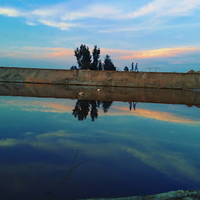 by Zubair Chana - Uncategorized All Uncategorized ( #bluewater #reflection #dusk #tree #bluesky )