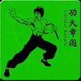 Kung Fu apk