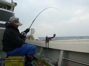 """Photo: 相変わらずよく釣る""""イノウエさん""""! 今度のは引きが違う!"""