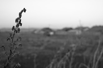 Photo: in the fields at the entrance of the village