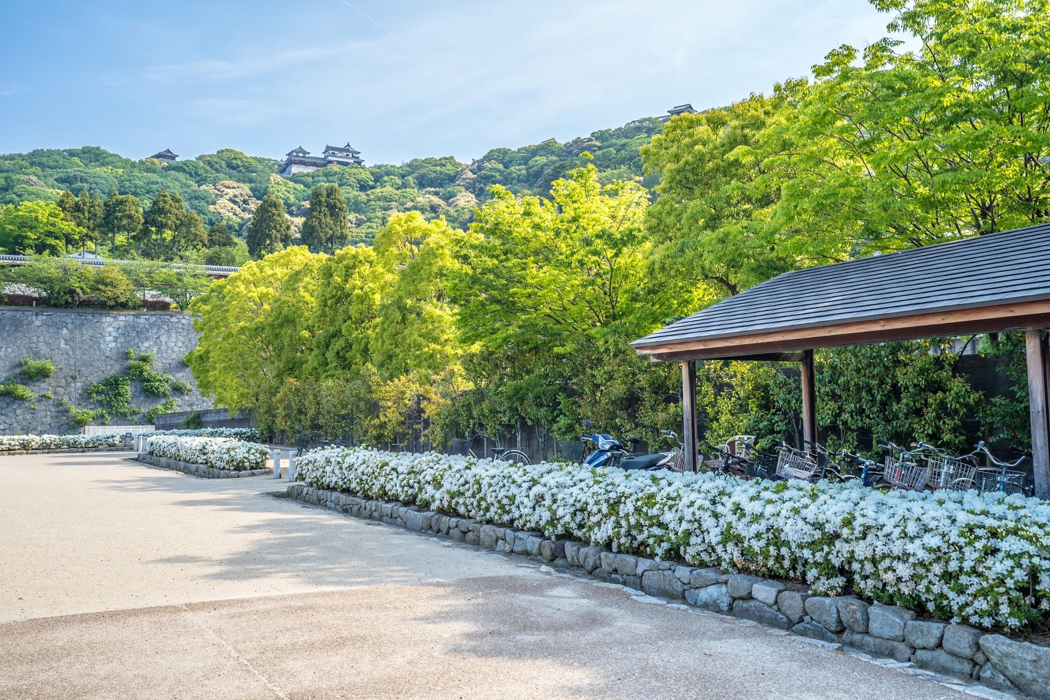松山 城山公園3