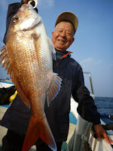 Photo: ナイスサイズ! オガワさん!真鯛キャッチ!