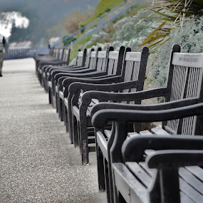 Memorial Benches, Eastbourne by Phil Clarkstone - City,  Street & Park  City Parks ( pwcbenches )