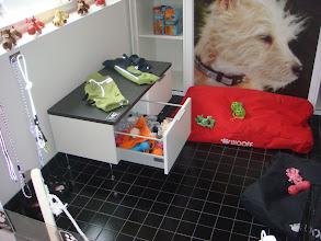 Photo: Koirahuoneita oli vain yksi ja sekin oli hieman tylsä. Vasemmassa nurkassa oli kyllä pesupaikka, mutta tuo lipasto on vähän tyhmässä paikassa ikkunan alla.
