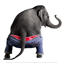 Dancing Talking Elephant icon