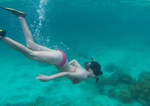 Photo: Mermaid #1: Adrienne