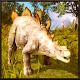Dinosaur Simulator (game)
