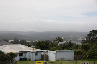 Photo: Year 2 Day 163 -  A Very Windy Day in Eden