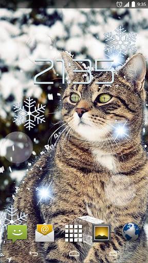 Winter Pets Live Wallpaper