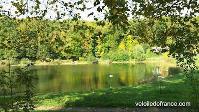 Photo: Un autre étang, étang de Meudon dans la forêt de Meudon - Guide de balade à vélo de Sceaux à Meudon par veloiledefrance.com