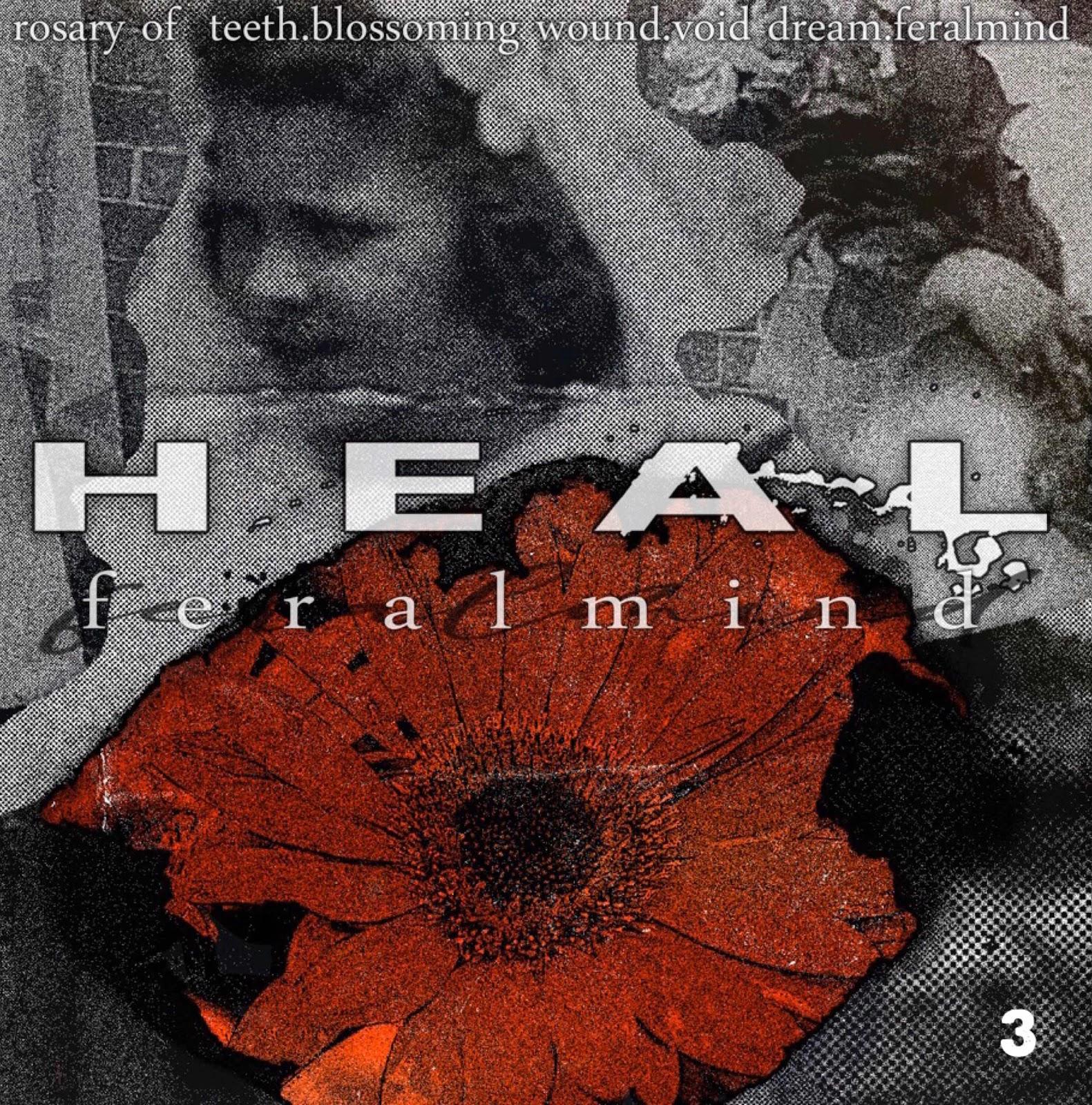 "Heal ""Feralmind"""