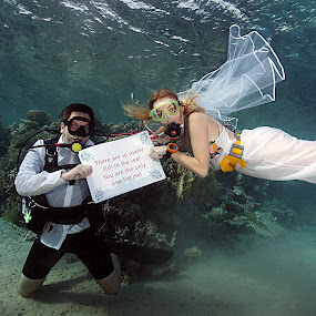 Only fish for me by Adi Drnda - Wedding Bride & Groom ( wedding, fish, underwater photography, diving, bride&groom,  )