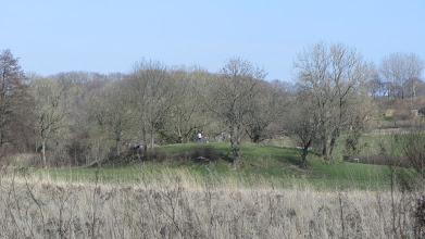 Photo: dieser Hügel ist ein Überrest einer uralten Burg