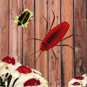 Beetle Thief icon