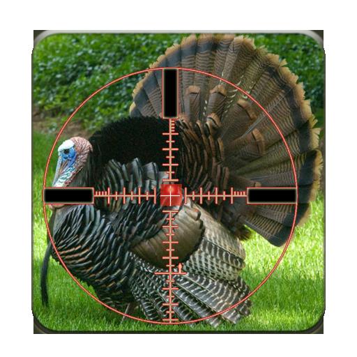 صيد الديك الرومى-Turkey Hunter