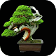 Bonsai Plans Ideas (app)