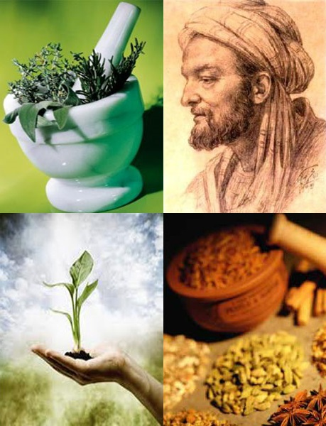Pestle and Mortar, Ibn Sina, Life Sprouting, Herbs and Spices