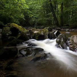 by Siniša Almaši - Nature Up Close Water ( depth, shadow, rocks, nature, stream, light, cascade, up close, stones, river, water )