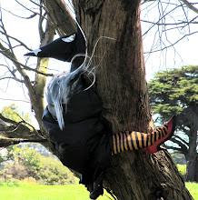 Photo: Year 2 Day 143 -  Still Hanging Around in Her Tree Since Halloween