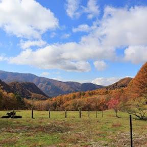 秋の信州、ビーナスラインでドライブと紅葉を楽しむ旅