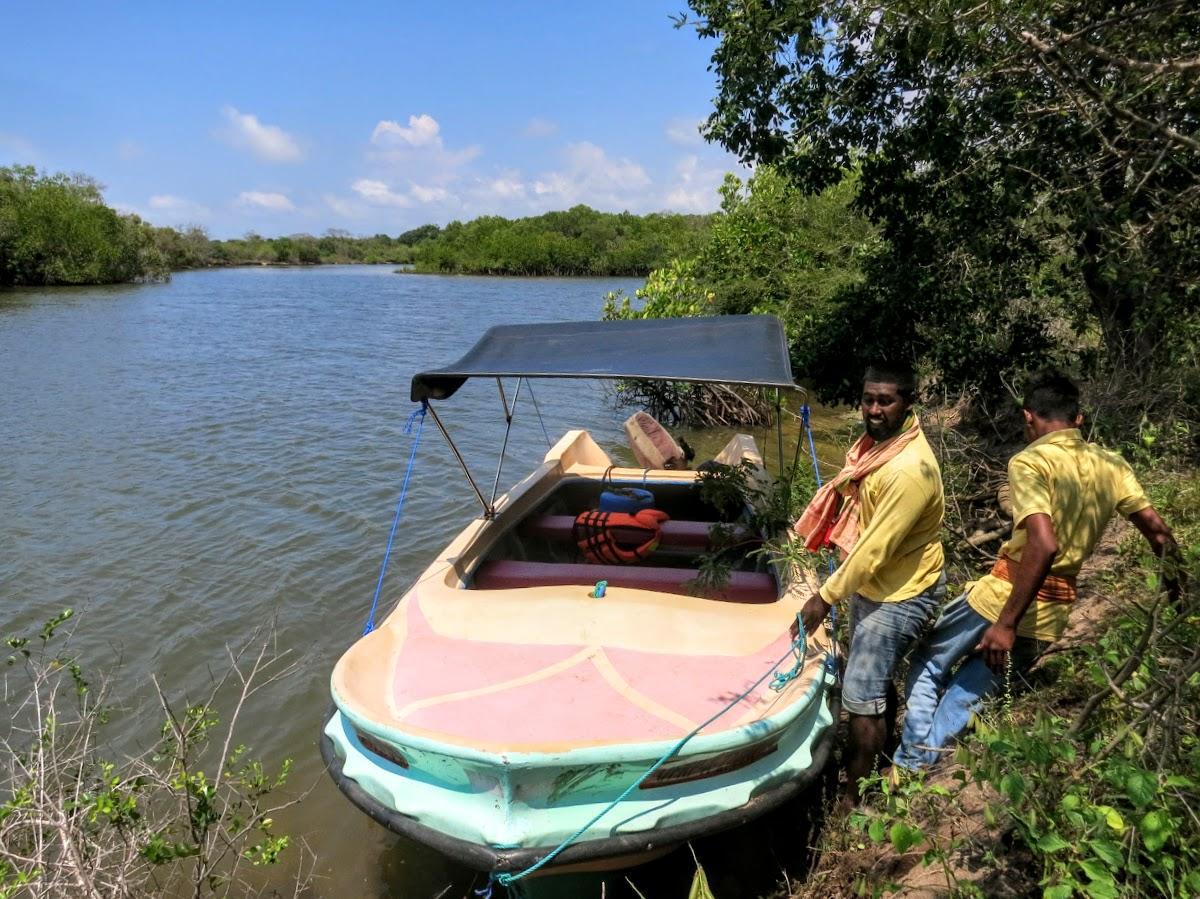 Sri. Lanka Wilpattu National Park . Boat ride through the mangroves