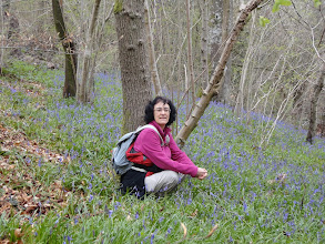 Photo: Chantal and the bluebells