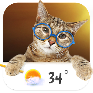 Cat weather widget wallpaper