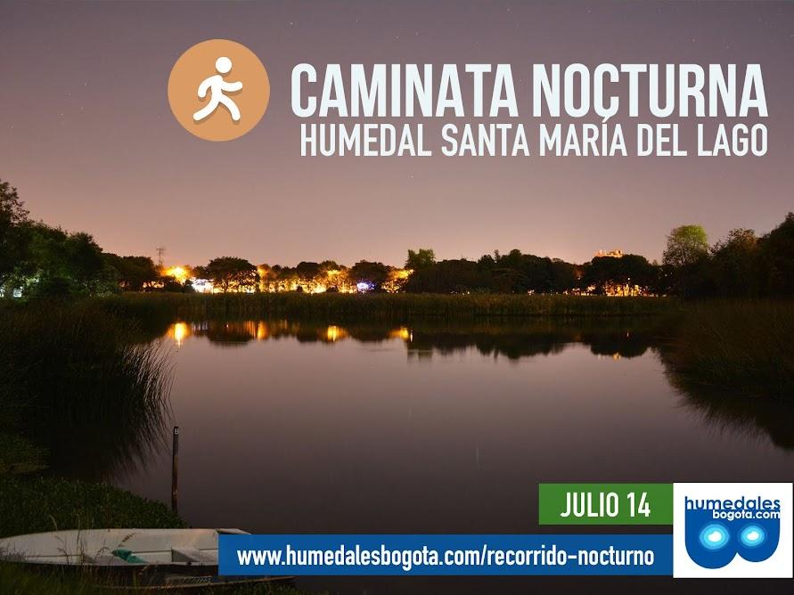 Caminata nocturna del humedal La Conejera