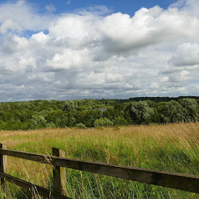 Over The Fence by Scott Williams-Collier - Landscapes Prairies, Meadows & Fields