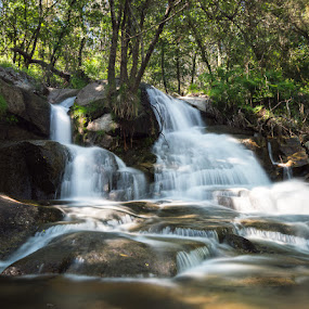 Fresh by Ricardo  Guimaraes - Nature Up Close Water ( stream, nature, waterscape, waterfall, long exposure, quiet, flow, portugal, river,  )