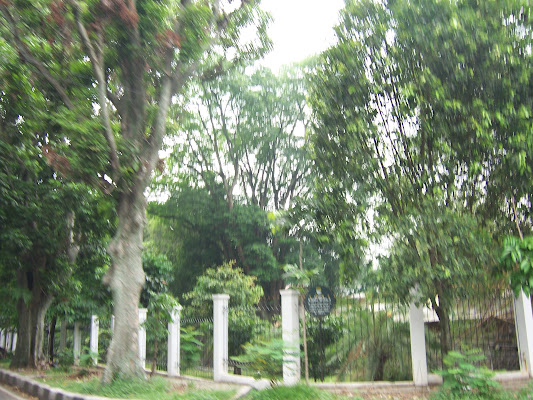 Taman Maluku Ruang Terbuka Hijau Kota Bandung