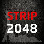 Strip 2048