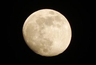 Photo: 今宵の月、十二日夜月。
