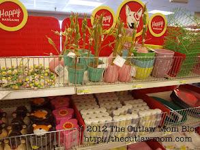 Photo: Love getting season items here.