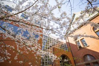 Photo: Spring campus photosOwen Graduate school for Business(Daniel Dubois / Copyright Vanderbilt University)