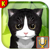 Talking Kittens 🐾 virtual cat