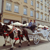 On the road in Krakow, Old Town di