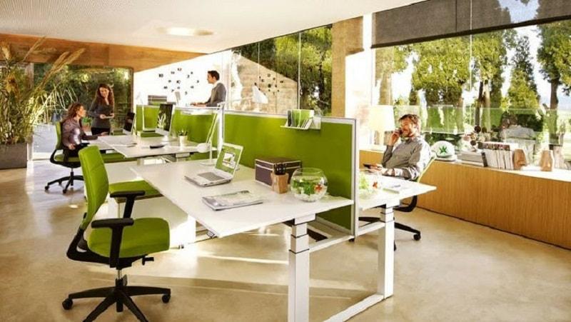 Trong thiết kế thi công nội thất văn phòng thì cân bằng ánh sáng tự nhiên và cây xanh rất quan trọng