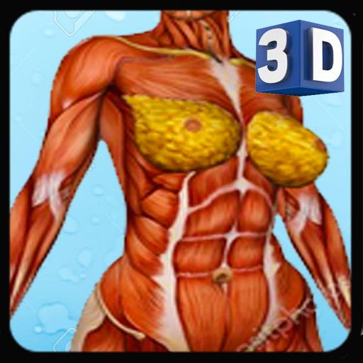 Baixar Female Anatomy 3D -Female Organs, Bones & Skeleton para Android