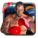 Real 3D Boxing Punch Pro icon