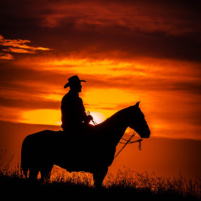 Sunset at the Rodeo by Gary Hanson - People Street & Candids ( clouds, rider, sunset, horse, rodeo,  )