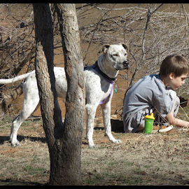 Dog and Autism  by Betty Sutton - Uncategorized All Uncategorized ( thank you )