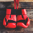 Boxing Training for exercises icon